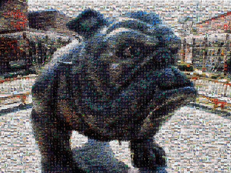 005-Bulldog-Collage